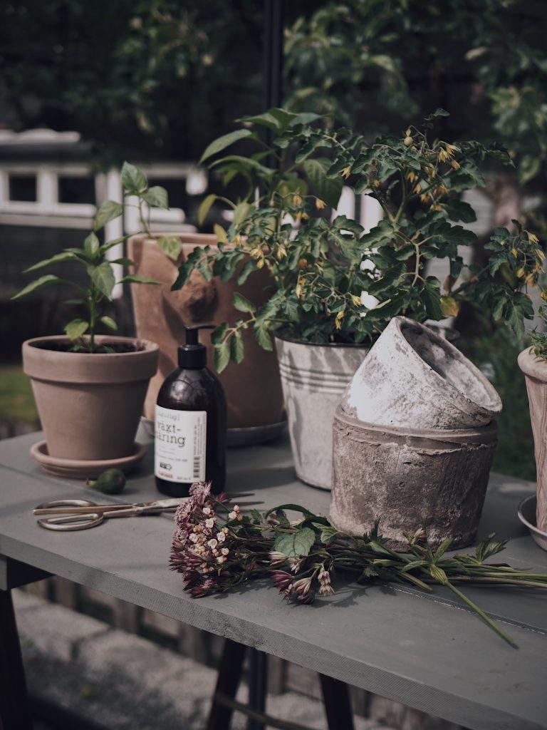 växthus blomsterlandet planteringsbord krukor